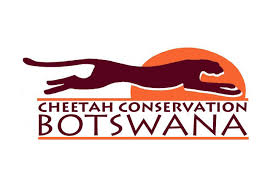 Cheetah Conservation Botswana